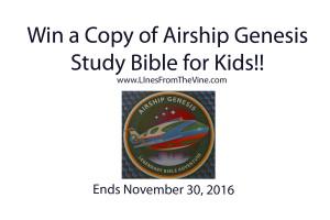 airship8-copy